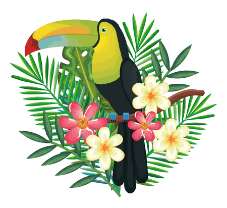 tropical and exotics flowers and leafs vector illustration design Illustration