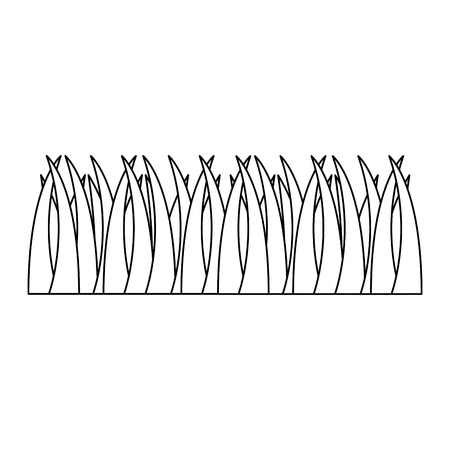 grass foliage natural meadow grow vector illustration