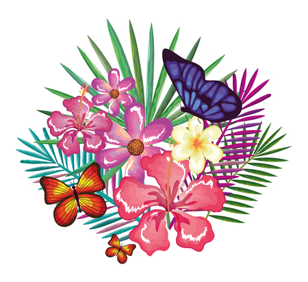 tropical and exotics flowers with butterflies vector illustration design Reklamní fotografie - 95481840