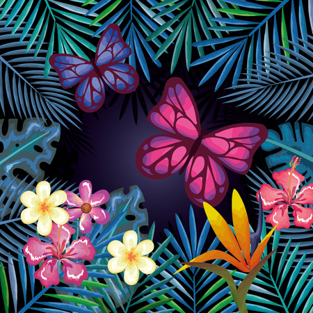 tropical and exotics flowers with butterflies vector illustration design Reklamní fotografie - 95482589