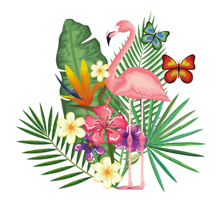 jardin tropical et exotique avec conception d'illustration vectorielle flamande