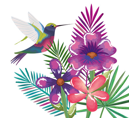 tropical and exotic garden with hummingbird vector illustration design Illustration