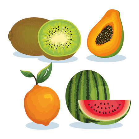 set tropical fresh fruits vector illustration design fruits, leaves and flowers, summer and exotic concept Stock Vector - 95485673