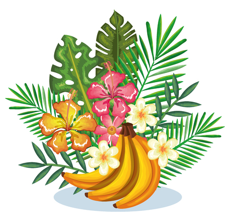 tropical garden with banana cluster vector illustration design fruits, leaves and flowers, summer and exotic concept Vectores