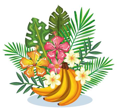 tropical garden with banana cluster vector illustration design fruits, leaves and flowers, summer and exotic concept Ilustração