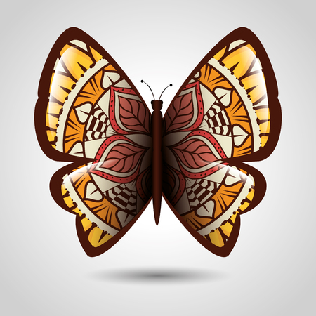 Butterfly with skin mandala style vector illustration design.