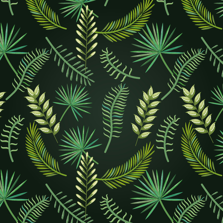Tropical and exotic palms leafs vector illustration design Illustration
