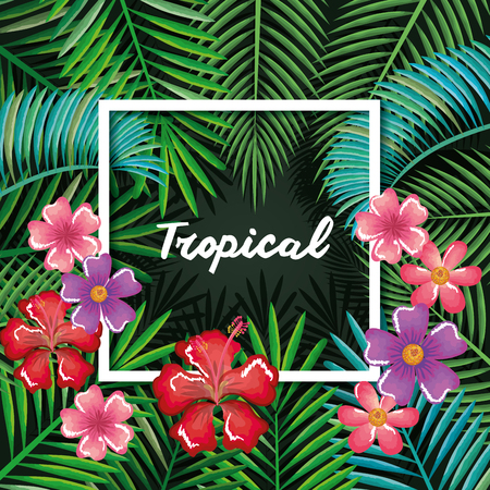 tropical and exotics flowers and leafs vector illustration design Reklamní fotografie - 95534951