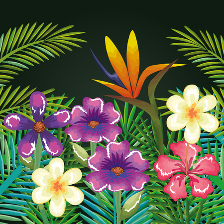 tropical and exotics flowers and leafs vector illustration design Ilustrace