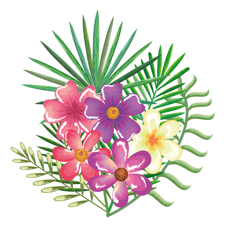 tropical and exotics flowers and leafs vector illustration design Reklamní fotografie - 95687773