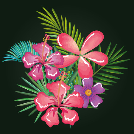 tropical and exotics flowers and leafs vector illustration design Reklamní fotografie - 95687774