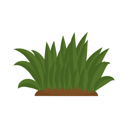 bush cultivated isolated icon vector illustration design Ilustrace
