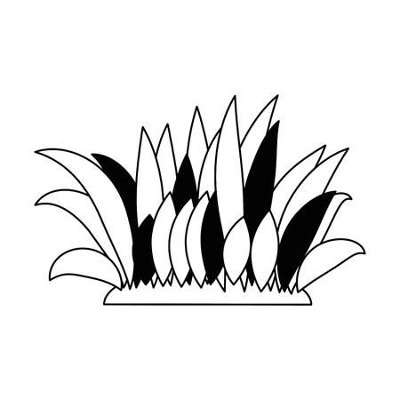 Bush gecultiveerd geïsoleerd pictogram vector illustratie ontwerp Stock Illustratie