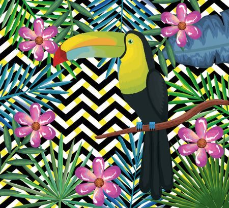 tropical garden with toucan over abstract background vector illustration design leaves and flowers, summer and geometric pattern Illustration