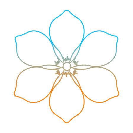 Frangipani flower natural bloom decoration ornament vector illustration degrade color line image