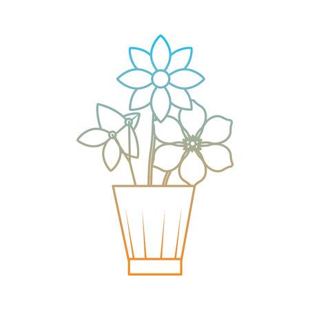 Flowers jasmine frangipani in vase decoration ornament vector illustration degrade color line image