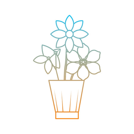 Flowers jasmine frangipani in vase decoration ornament vector illustration degrade color line image