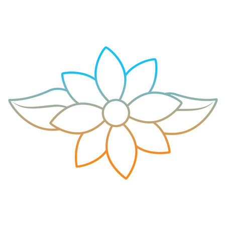 Jasmine flower leaves decoration ornament vector illustration degrade color line image