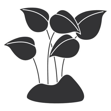 Leaves plants garden icon vector illustration design
