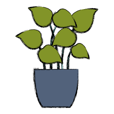 A pot with leafs house plant vector illustration design Illustration