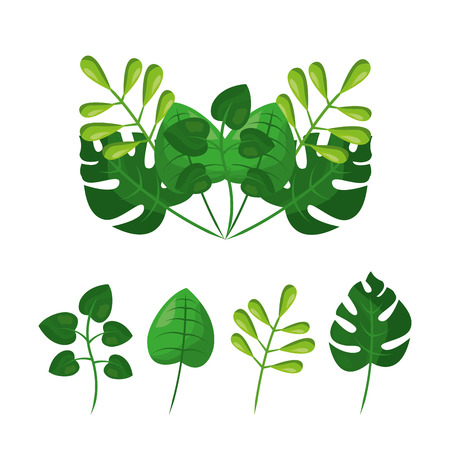 Tropical leaves botanical vector illustration Illustration
