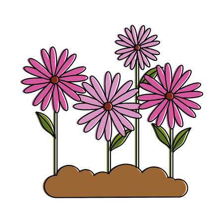 beautiful flowers garden cultivated vector illustration design Illustration