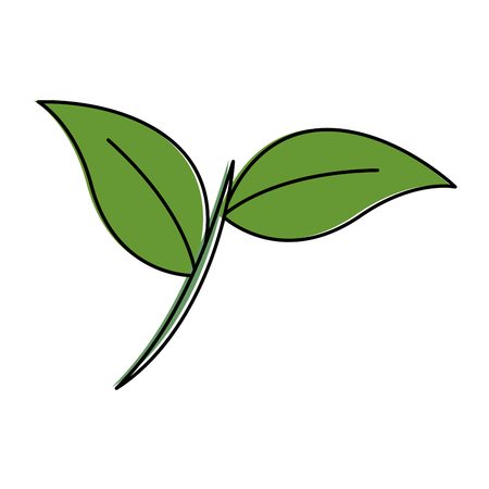 A leafs plant isolated icon vector illustration design  イラスト・ベクター素材