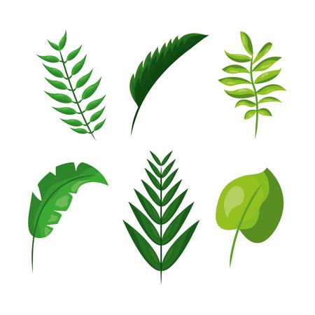 Tropische bladeren vector illustratie