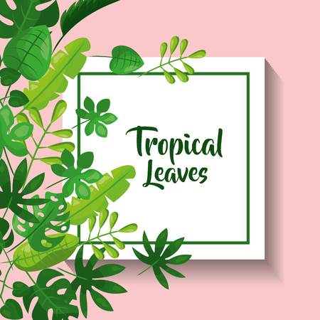 tropical leaves greeting card natural foliage frond decoration vector illustration