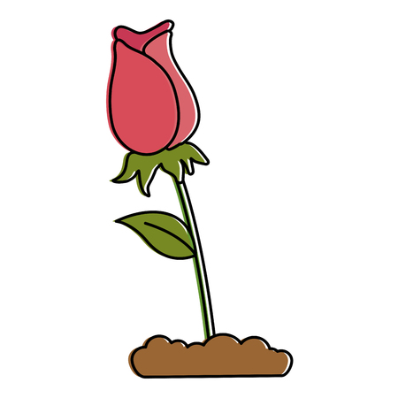 beautiful rose decoratived icon vector illustration design