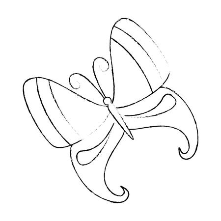 butterfly flying decorative frame vector illustration design Stock Illustratie