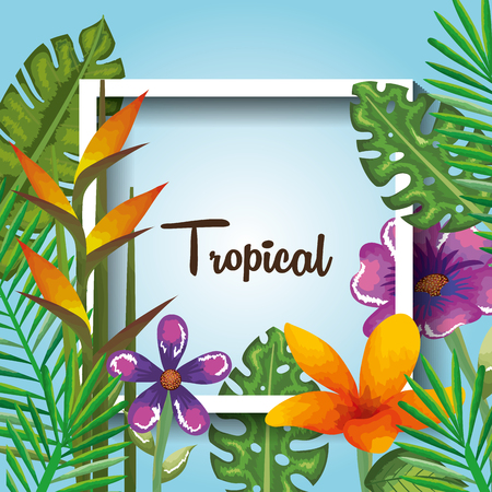 tropical and exotics flowers and leafs over beach background vector illustration design Reklamní fotografie - 95727312