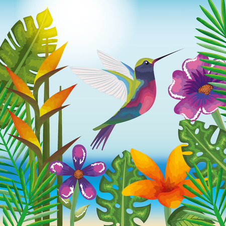 tropical and exotic garden with hummingbird vector illustration design Vettoriali