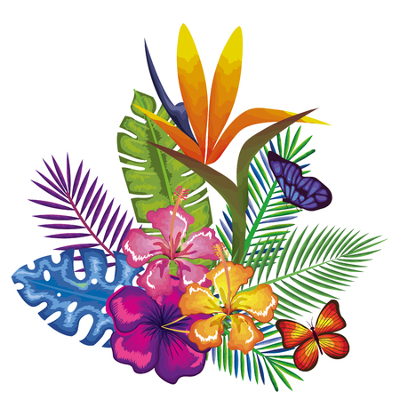 Tropical and exotics flowers with butterflies vector illustration design Reklamní fotografie - 95735154