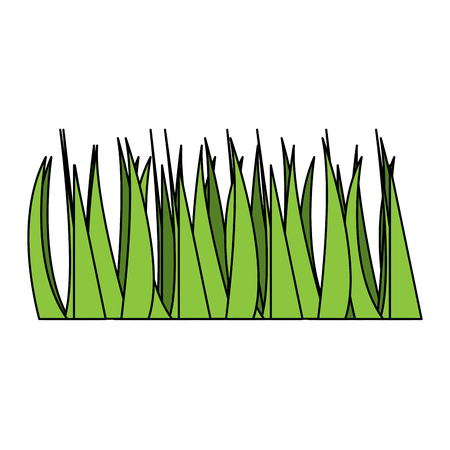green grass frond natural foliage icon vector illustration