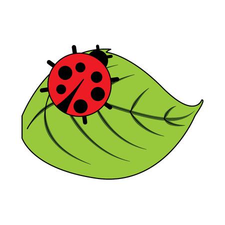 cute ladybug in leaf natural wildlife animal vector illustration Vettoriali