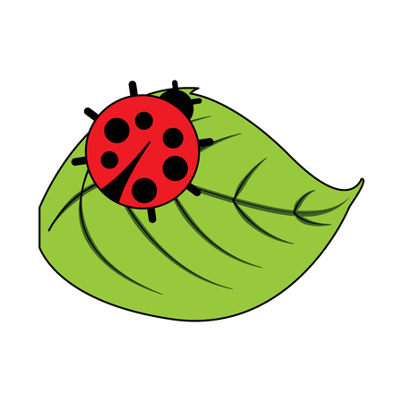 cute ladybug in leaf natural wildlife animal vector illustration Çizim
