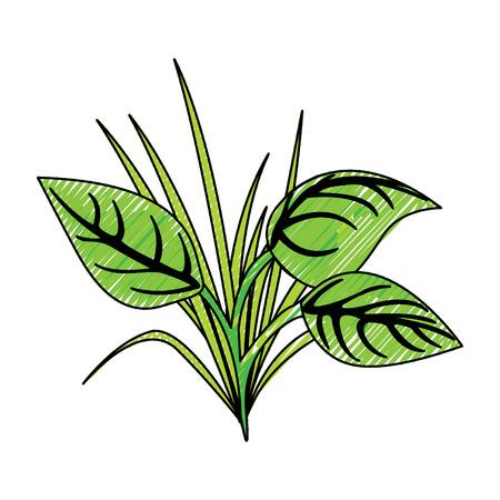 green leaves grass natural plant image vector illustration Illustration