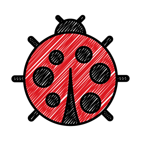 cute ladybug dotted animal insect wildlife vector illustration