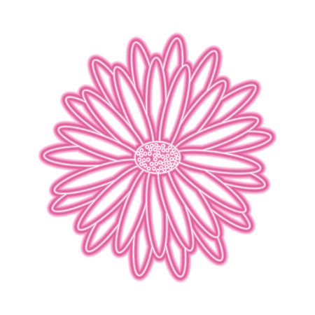 beautiful natural flower daisy petals decoration vector illustration pink neon image 版權商用圖片 - 95767957