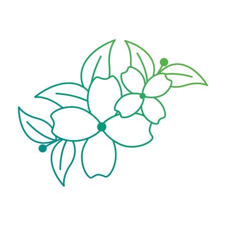 Floral decoration frame illustration design