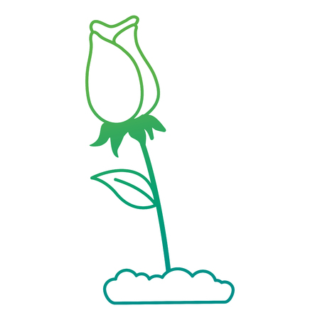 Rose decorative icon illustration design