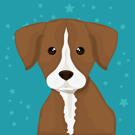dog bred pet friendly vector illustration design