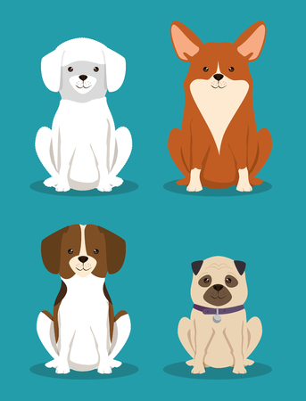 group of dogs pets friendly vector illustration design