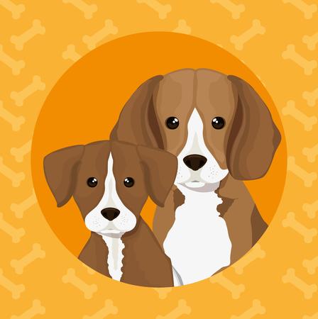 dog pet friendly vector illustration design