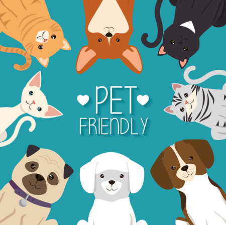 dogs and cats pets friendly vector illustration design Stock Vector - 95776621