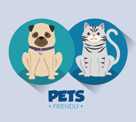 dogs and cats pets friendly vector illustration design Stock Vector - 95776626