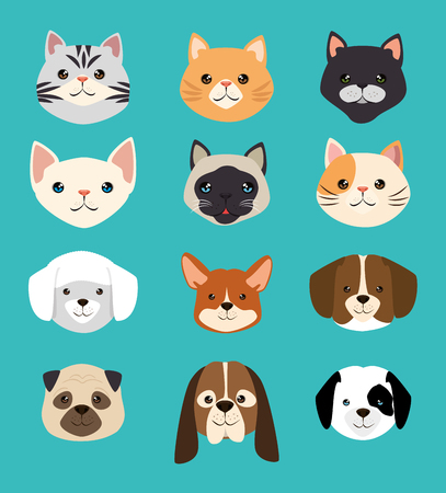 dogs and cats pets friendly vector illustration design 版權商用圖片 - 95776652