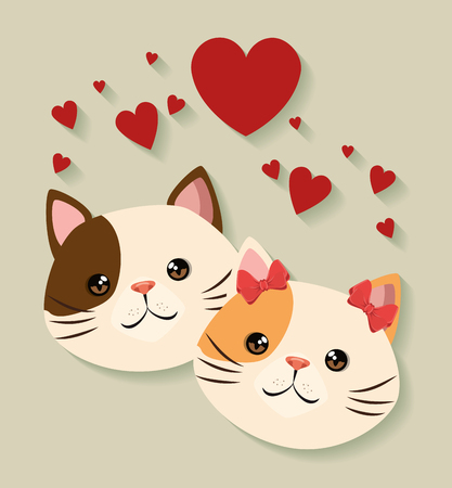 cute cats couple pets friendly vector illustration design