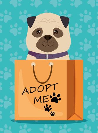 dog in paper bag pet friendly vector illustration design